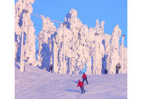 Get a glimpse of Finland's winter wonderland
