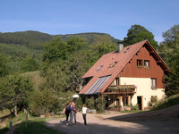 Go green in Alsace