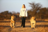 Discover Zimbabwe's 'Lion Country' with Acacia Africa