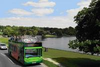 New Forest offers bus tour service