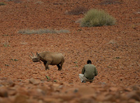 A conservation success story in Namibia