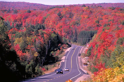 Spectacular Fall Foliage In Ontario Easier