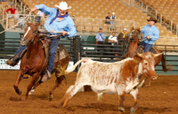 Saddle up for ranching & rodeos in Kissimmee
