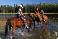 Top50Ranches.com - Simply heaven for horse riders