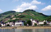 Castles and vineyards of the Rhine