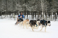 Cariboo Challenge Sled Dog Races