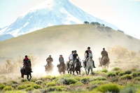 Ranches & rides with a wow factor