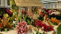Grenada wins ninth Gold Medal at RHS Chelsea Flower Show