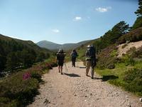 Affordable family adventures in the Cairngorms