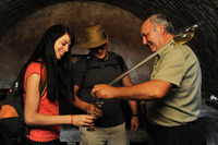 Taste the finest Czech wines at traditional wine harvest festivals
