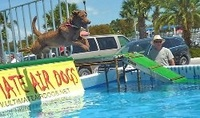 Follow Paul Merton to Florida Keys Woofstock 2012