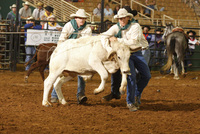 Saddle up for some half term rodeo fun in Kissimmee