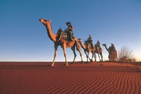 Camel Trek in Australias Red Centre