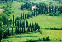 Search for the finest Italian antiques in Umbria