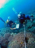 Divers on a Biosphere Expeditions conservation project
