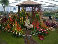 Grenada wins tenth Gold Medal at RHS Chelsea Flower Show