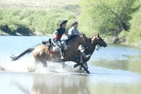 Sterling rates boost interest in Argentinian ranch holidays