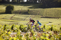 New cycling map to explore Champagne-Ardenne