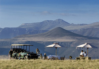 Authentic, exclusive safaris off the beaten track