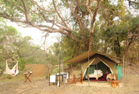 Bush Survival Skills Safari - A mobile tented safari with a difference