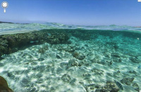 Google Street View goes diving on the Great Barrier Reef