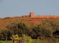 Turkey Tagine & Christmas at the Kasbah (Angour)