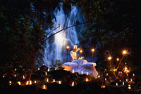 Ignite the lights of passion at The Sarojin
