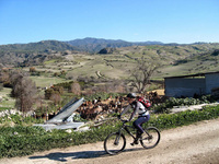 New self-guided mountain bike holidays in Cyprus