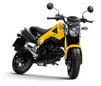 Honda MSX125 - A new leisure motorcycle for the youth market