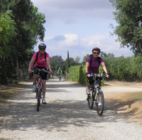 Guided gastronomic cycling tour in Catalonia for solo travellers
