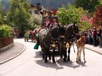 May news, traditions, events from the Austrian Tirol