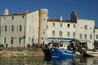 Idyllic Ile de Ré - New boutique break
