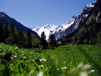 Volunteering in the Zillertal Alps High Mountain Nature Park