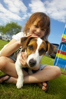 Holiday parks solve dog dilemma at a stroke