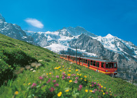 Get on track with your Jungfrau VIP Pass