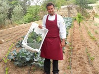 Phoenicia Hotel Malta unveils new kitchen garden for self-sourced restaurant