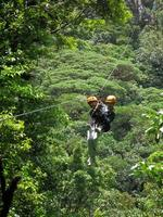 Swing through the trees like a monkey in Costa Rica!