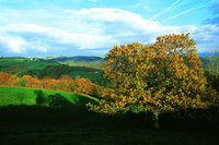 Explore the Lot Valley this autumn