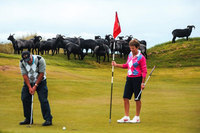 Greener greens for Scotland's golf courses