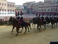 Horsing around at the Palio