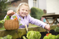 How does your garden grow? Helpful advice promises a bumper crop