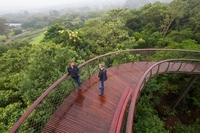 "Kirstenbosch Botanical Garden's ""Boomslang"" is unleashed"