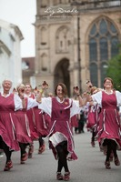 Warwick Folk Festival' gears up for another successful year