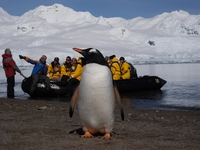 Quark announces 2015/16 Antarctic voyages line-up