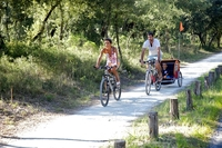 Cycling holidays in Poitou-Charentes