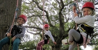 New tree-spirited climbing adventures at The National Forest Wood Fair
