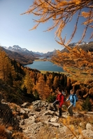 Leaf peeping in Switzerland: Closer than New England