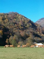 Autumnal Art Retreats in the French Pyrenees