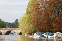 Henley on Thames colourful autumn collection