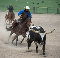 Experience a western adrenaline rush
